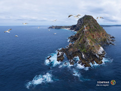 cape point wallpaper